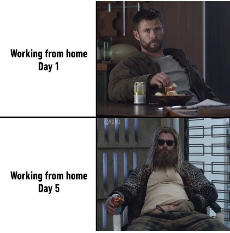 covid19 thor working from home meme
